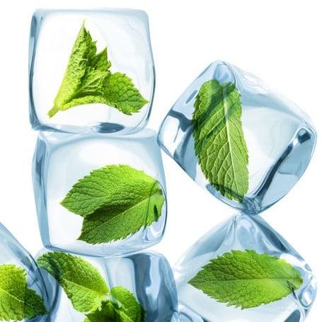 E-liquide Saveur menthe glaciale reverse